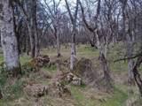 22191 Deer Trail Court - Photo 21