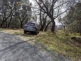 22191 Deer Trail Court - Photo 3