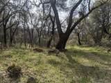 22191 Deer Trail Court - Photo 4
