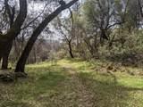 22191 Deer Trail Court - Photo 9