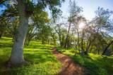 0 Blue Oak Ranch Road - Photo 32