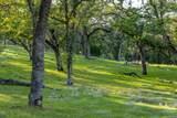 0 Blue Oak Ranch Road - Photo 9