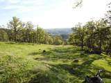 15350 Moccasin Ranch Road - Photo 22