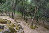 11798 Warbler Way - Photo 58