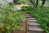 11798 Warbler Way - Photo 67