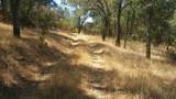 21150 Amoruso Way - Photo 1