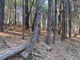 20955 Todd Valley Road - Photo 4