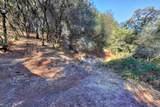 17697 N Cherry Creek - Photo 27