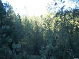 0 Darling Ridge/Balderston - Photo 2