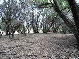 71 Dream Ranch Circle - Photo 7