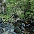 19724 Noatak Canyon Way - Photo 3
