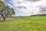 1671 Alexander Hill Lane - Photo 14