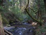0 Clear Creek Road - Photo 8