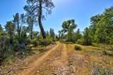 0 Omo Ranch Road - Photo 13