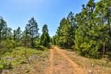 0 Omo Ranch Road - Photo 7