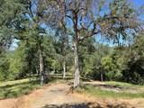 43753 Parker Pass Road - Photo 41