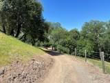 43753 Parker Pass Road - Photo 42