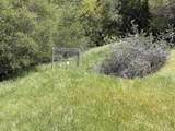 43753 Parker Pass Road - Photo 44