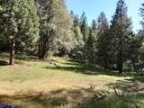 8361 Boondock Trail - Photo 20