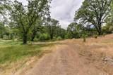 14609 Shake Ridge Road - Photo 53