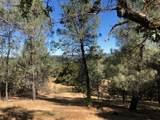 2408 Cascade Trail - Photo 24
