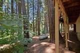 3626 Gold Ridge Trail - Photo 40
