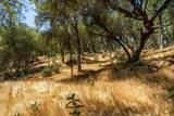 16801 Indian Hill Circle - Photo 5