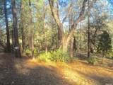 1346 Shady Tree Lane - Photo 6
