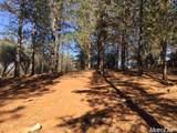 2420 Secret Ravine Trail - Photo 12