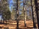 2420 Secret Ravine Trail - Photo 13