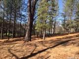 2420 Secret Ravine Trail - Photo 15