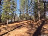 2420 Secret Ravine Trail - Photo 16