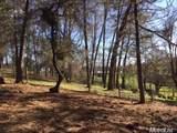 2420 Secret Ravine Trail - Photo 17