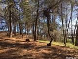 2420 Secret Ravine Trail - Photo 20