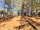 2420 Secret Ravine Trail - Photo 9