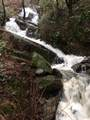 7400 Rock Falls Drive - Photo 8