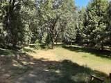 8361 Boondock Trail - Photo 5