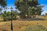 10604 Rio Sombra Drive - Photo 49