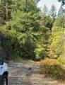 520 Forni Road - Photo 11