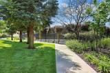 554 Serpa Ranch Road - Photo 47