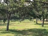 2 Cypress Avenue - Photo 1
