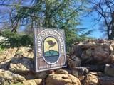 2420 Secret Ravine Trail - Photo 3