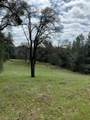 0 Cedar Pines - Photo 4