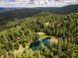 15641 Grizzly Ridge Road - Photo 47