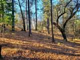 0 Pleasant Ridge Road - Photo 14