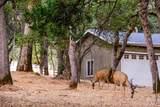 14119 Beitler Road - Photo 72