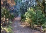17470 Winding Oaks - Photo 12