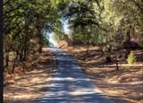 17470 Winding Oaks - Photo 23