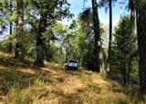 520 Forni Road - Photo 4