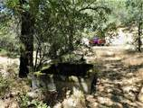 5001 Riverfront Trail - Photo 77